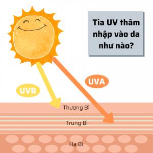 tia UV thâm nhập vào da như nào