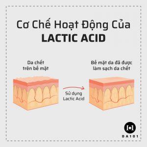 Cơ chế hoạt động của Lactic Acid
